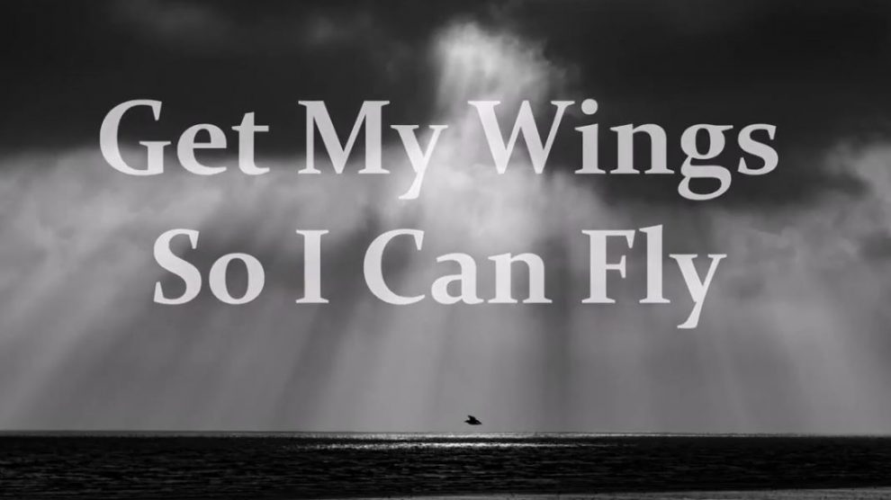 Get My Wings So I Can Fly